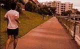 Training: Long Slow Distance (LSD)Run