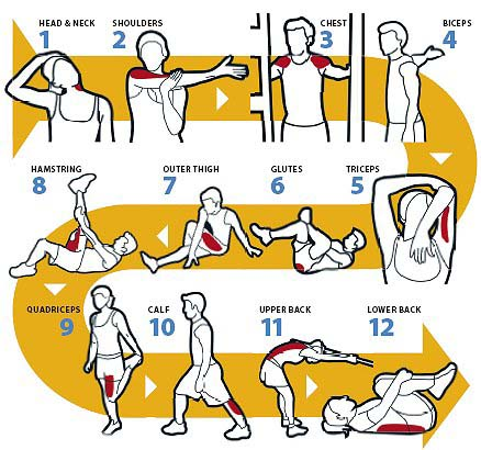graphic_stretches